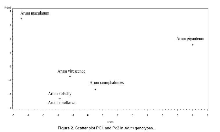 electronic-biology-Scatter-plot