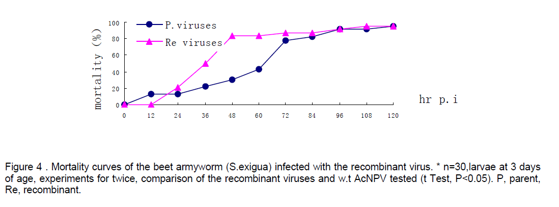 electronic-biology-days-age