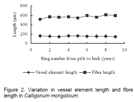 electronic-biology-element-length