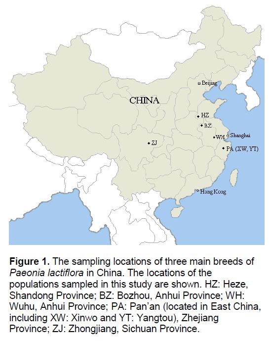 electronic-biology-lactiflora-China