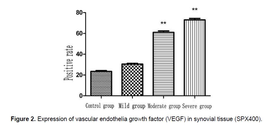 ejbio-synovial-tissue